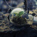 Consumi in calo. Ripartire si può, dalla green economy